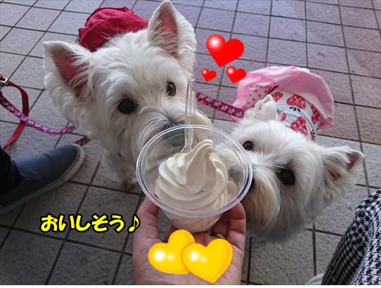 nagasaki32.jpg