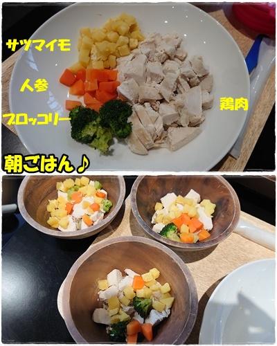oiwairyokou40.jpg