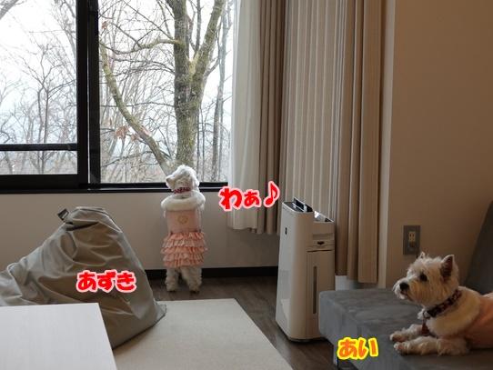 oiwairyokou42.jpg