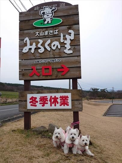 oiwairyokou49.jpg