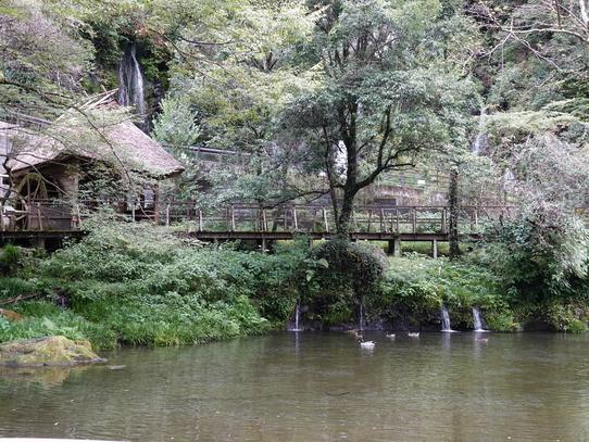takachiho19.jpg