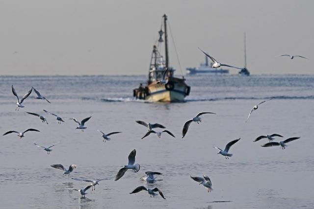 200307妻鹿漁港23