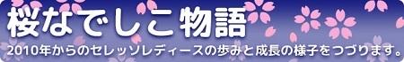 header-blog-sakuranadeshiko.jpg