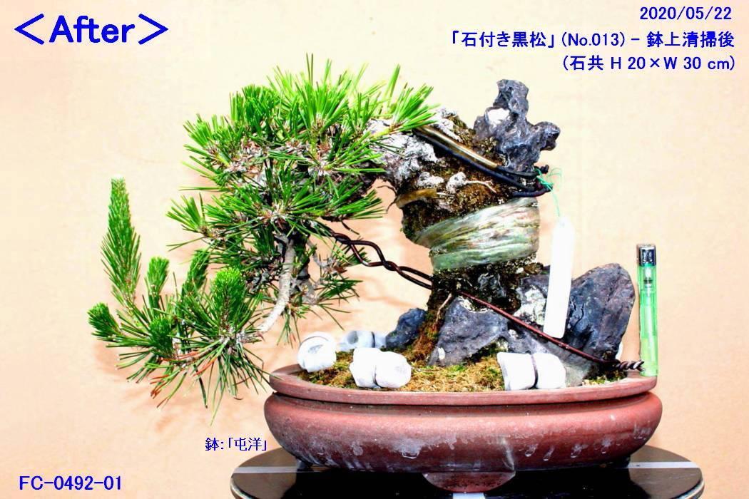 FC0492-01.jpg