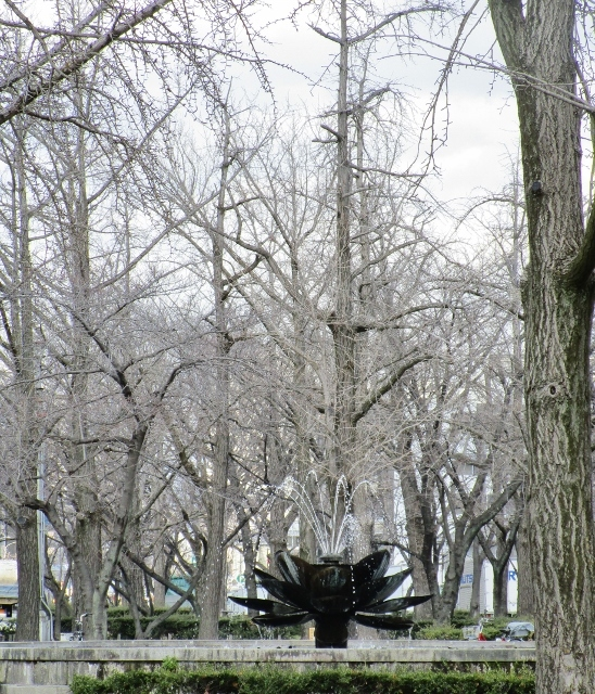 200302f.jpg