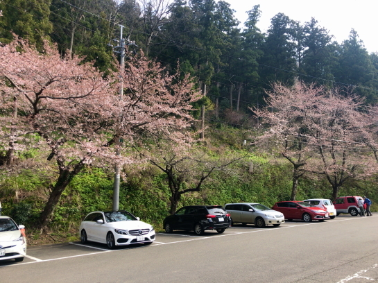 kugami0003.jpg
