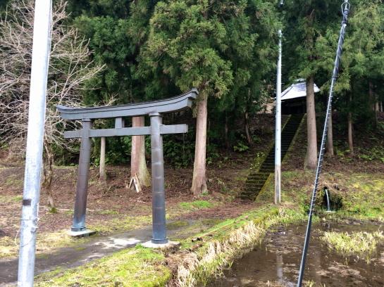 yakushi20066_202003302002574f7.jpg
