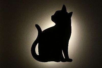 黒猫ライト-02