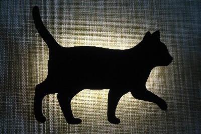 黒猫ライト-01