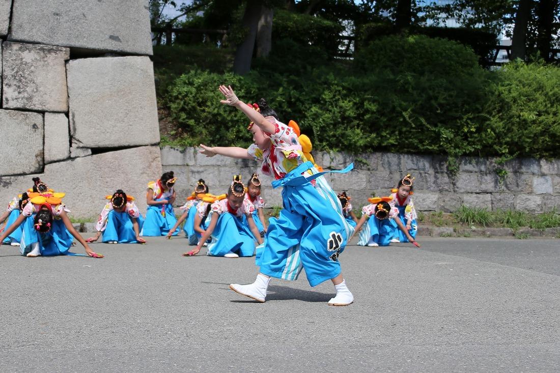 koiya192komogoku 33