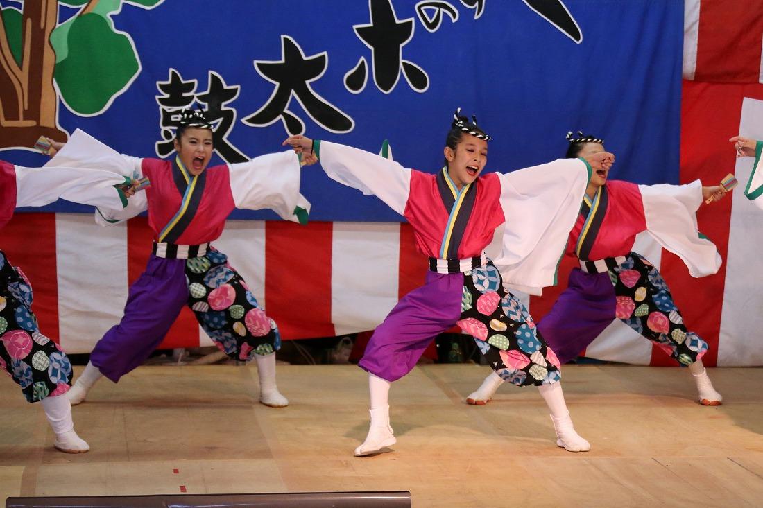 kayashima19sakura 14