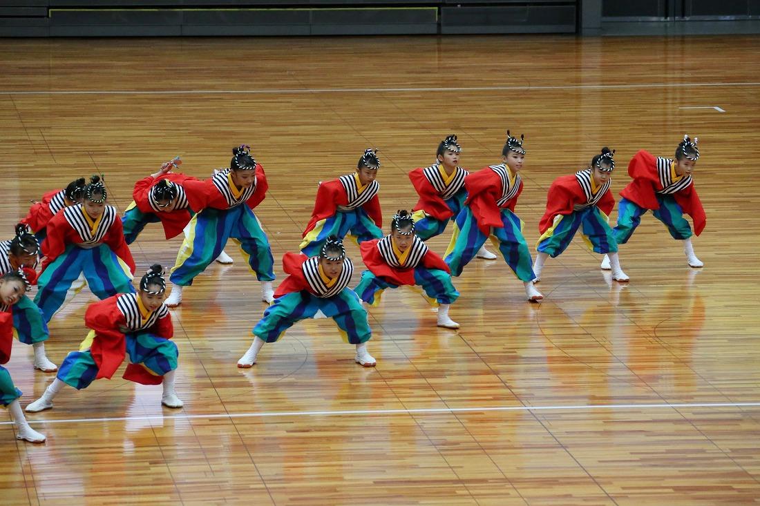 taisoufes19sakura 6
