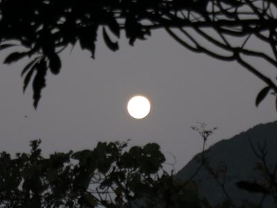 191213-11=朝の満月fm庵裏