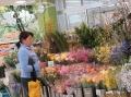 s-222スーパーの花屋