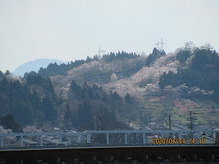 s-桜404城ヶ山の