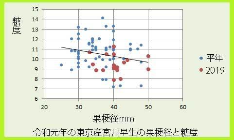 ikedamiyaw果梗径と糖度