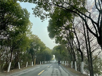 上海EP_kUlXWsAEF-Yd