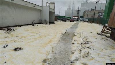 aaayellow-snow-russia.jpg
