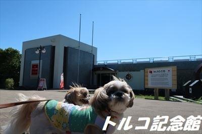 大島-A_R