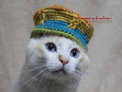 王冠風帽子着用例