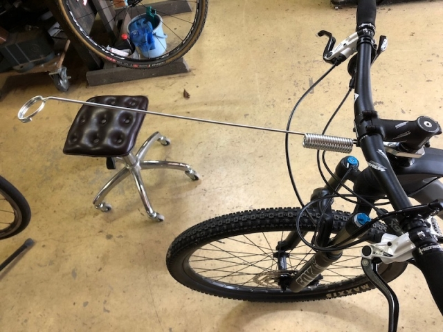 bikejoring_antena.jpeg