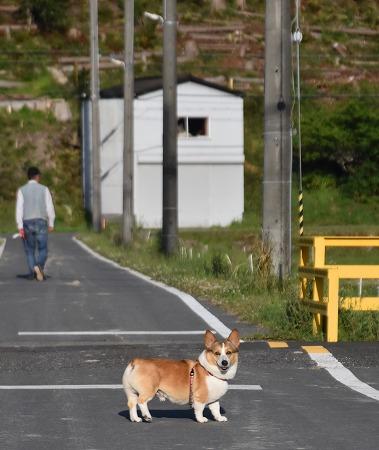 200512お散歩 (3)