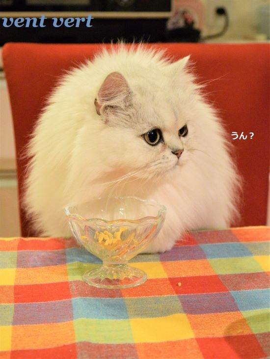 食卓でご飯7