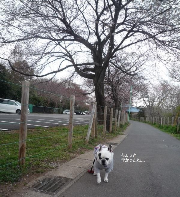 にこら201011to201108 2970