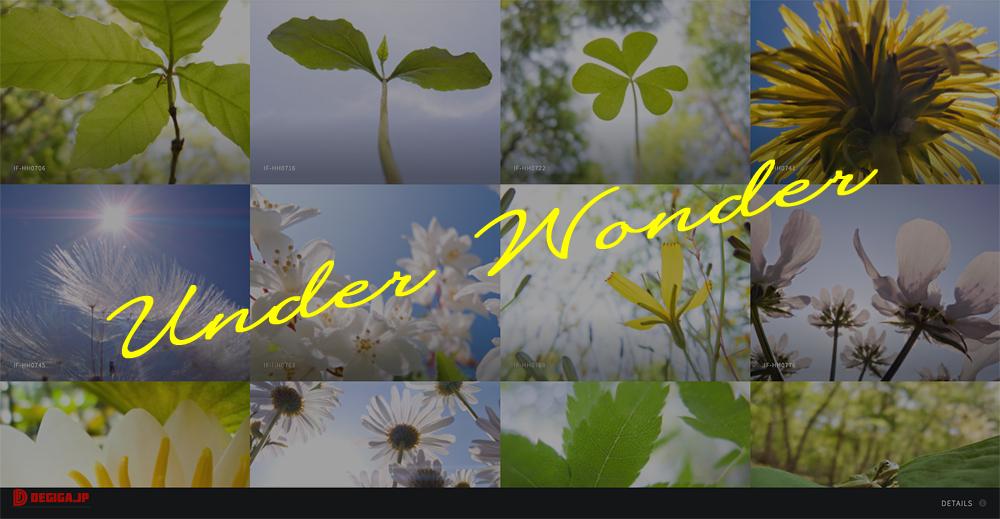 スペシャルサイト:Under-Wonder