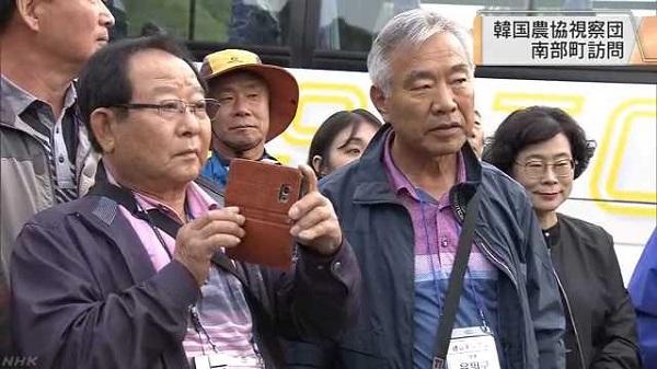 20191022韓国団体がサクランボ園など視察!青森県南部町・板柳町のりんご農家も・イチゴなど苗が盗まれ大損害