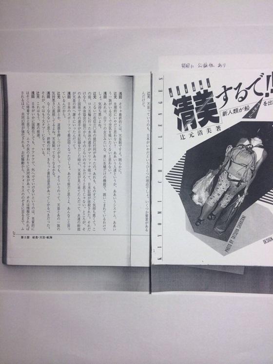 辻元清美「生理的にいやだと思わない? ああいう人達というか、ああいうシステム、ああいう一族がいる近くで空気を吸いたくない」「天皇っていうのも、日本がいやだというひとつの理由でしょ」
