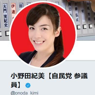 20200217小野田紀美「なぜ渡航制限を他国のようにしないのか?自民党内の会議で沢山の議員が主張している」