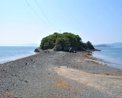 ねずみ島(大潮干潮)