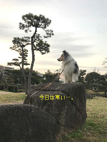 IMG_8041.jpg