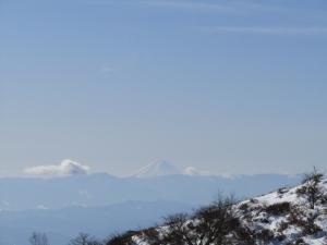 雪の森s (5)