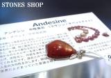 チベットアンデシンSVPTNo1②