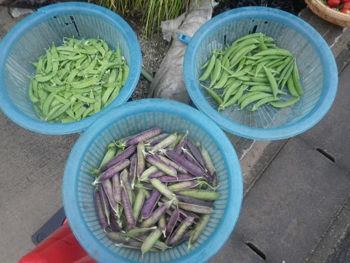 収穫1_20_05_09