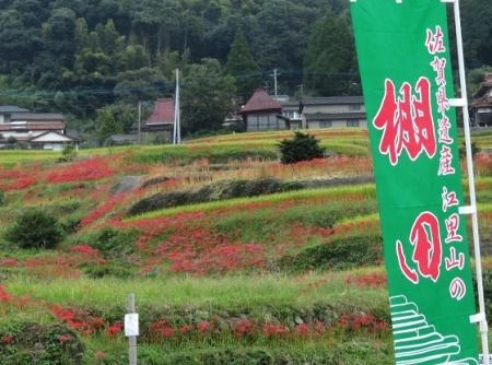 江里田の彼岸花と滝 2019-09-26 034