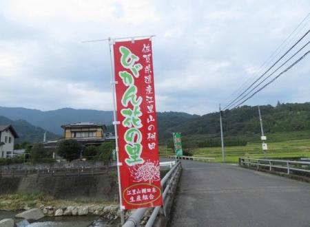 江里田の彼岸花と滝 2019-09-26 101