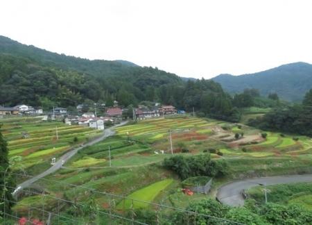 江里田の彼岸花と滝 2019-09-26 098