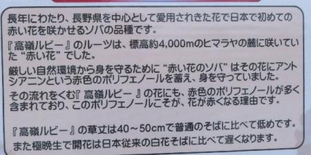 2019-11-13 黒木展望所_016