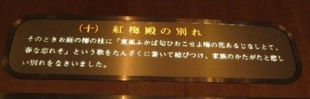 露草 2019-08-30 029