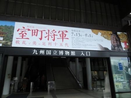 露草 2019-08-30 047