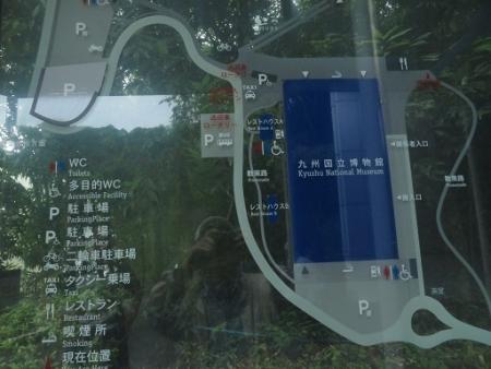 露草 2019-08-30 054