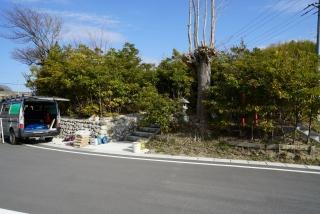 a見渡神社 鎮守の森