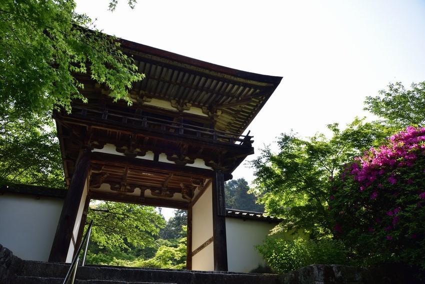 _20200502_093052_tyougaku (5)