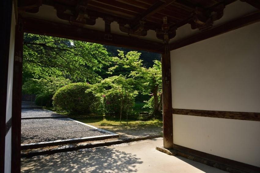 _20200502_093052_tyougaku (6)
