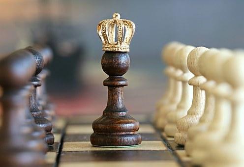 chess-1483735__340 (496x340) (2) (496x340) (496x340)