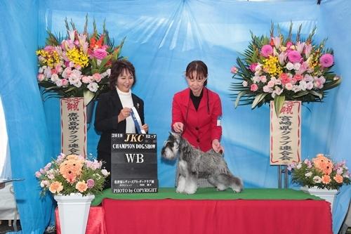 糸長崎ショー2019年12月8日