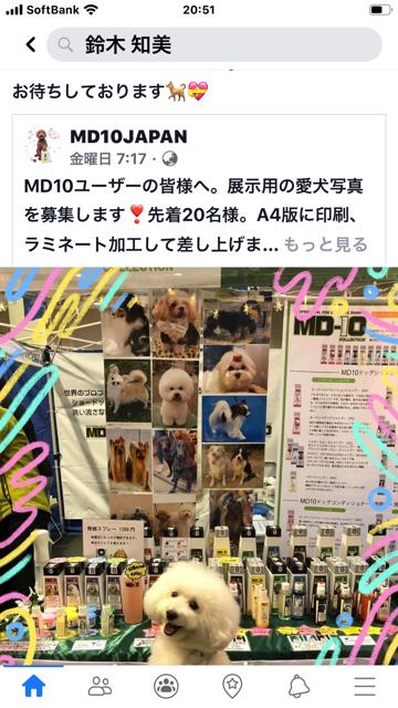 MD10モデル